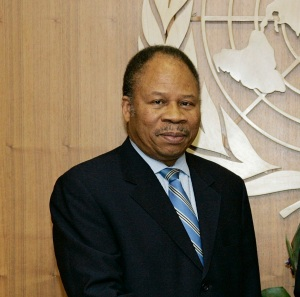 Former Representative of the United Nations Secretary-General in Guinea-Bissau and Head of the United Nations Peacebuilding Support Office in Guinea-Bissau (UNOGBIS) from 2006 - 2008